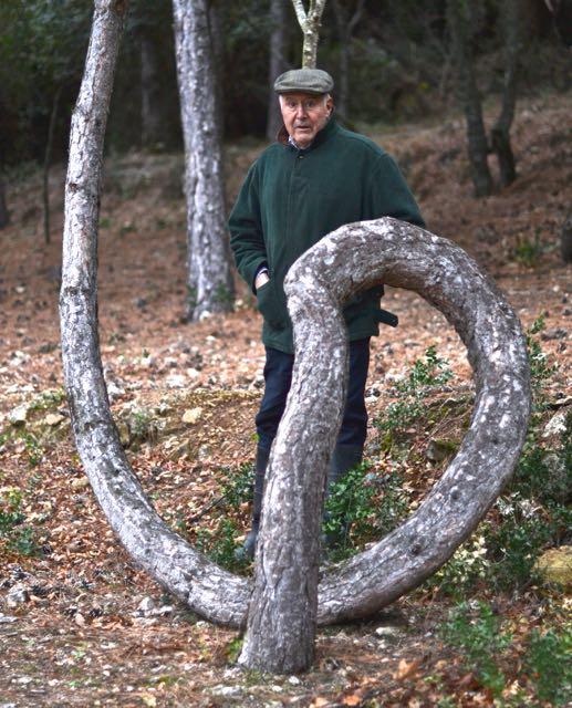 El pí del Foradat, Pinus halepensis. Vimbodí. Arbres Singulars amb Lluís Espasa i Rull.