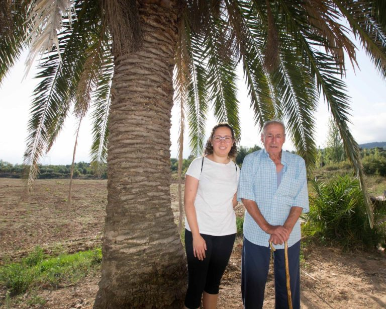 La palmera de cal Morgades, Phoenix canariensis, l'Espluga de Francolí. Arbres Singulars amb Joan i Aïda Morgades.