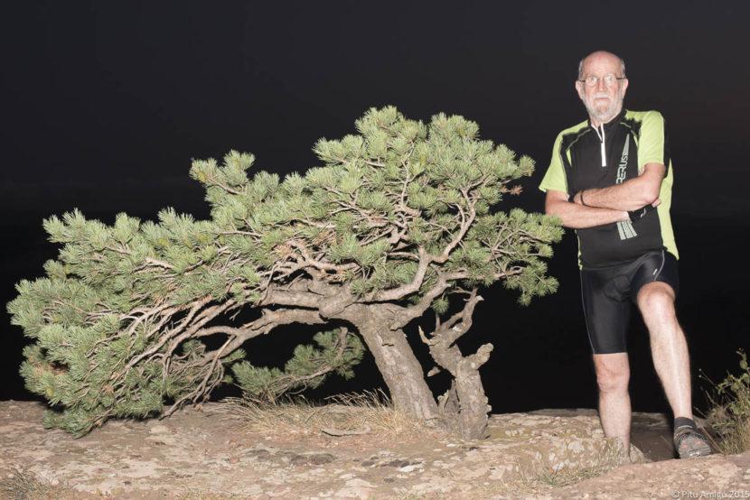 Pi de les tres creus, Pinus sylvestris amb Pep Torres