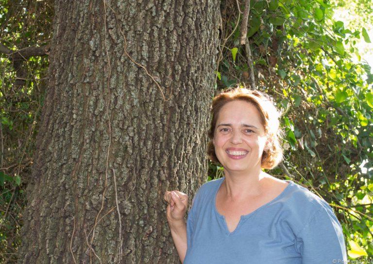 El reboll del Peu del Bosc, Quercus cerrioides. L'Espluga de Francolí. Arbres Singulars amb Anna Moliner.