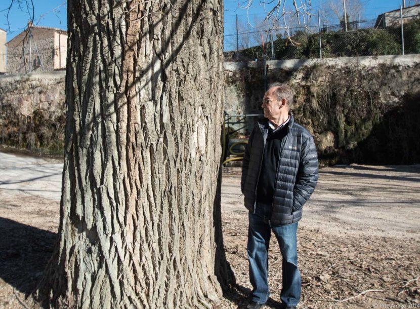 Xop de la bassa d'en Jan, amb Josep Amigó, l'Espluga de Francolí, Arbres Singulars