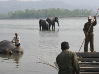 Feina al riu. Jungles del Therai 2015 MVR